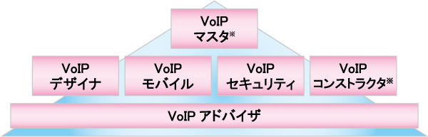 VoIP�F��Z�p�Ҏ��i